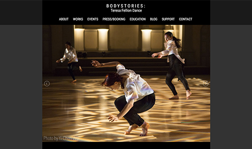 Screenshot of Bodystories (redesign)